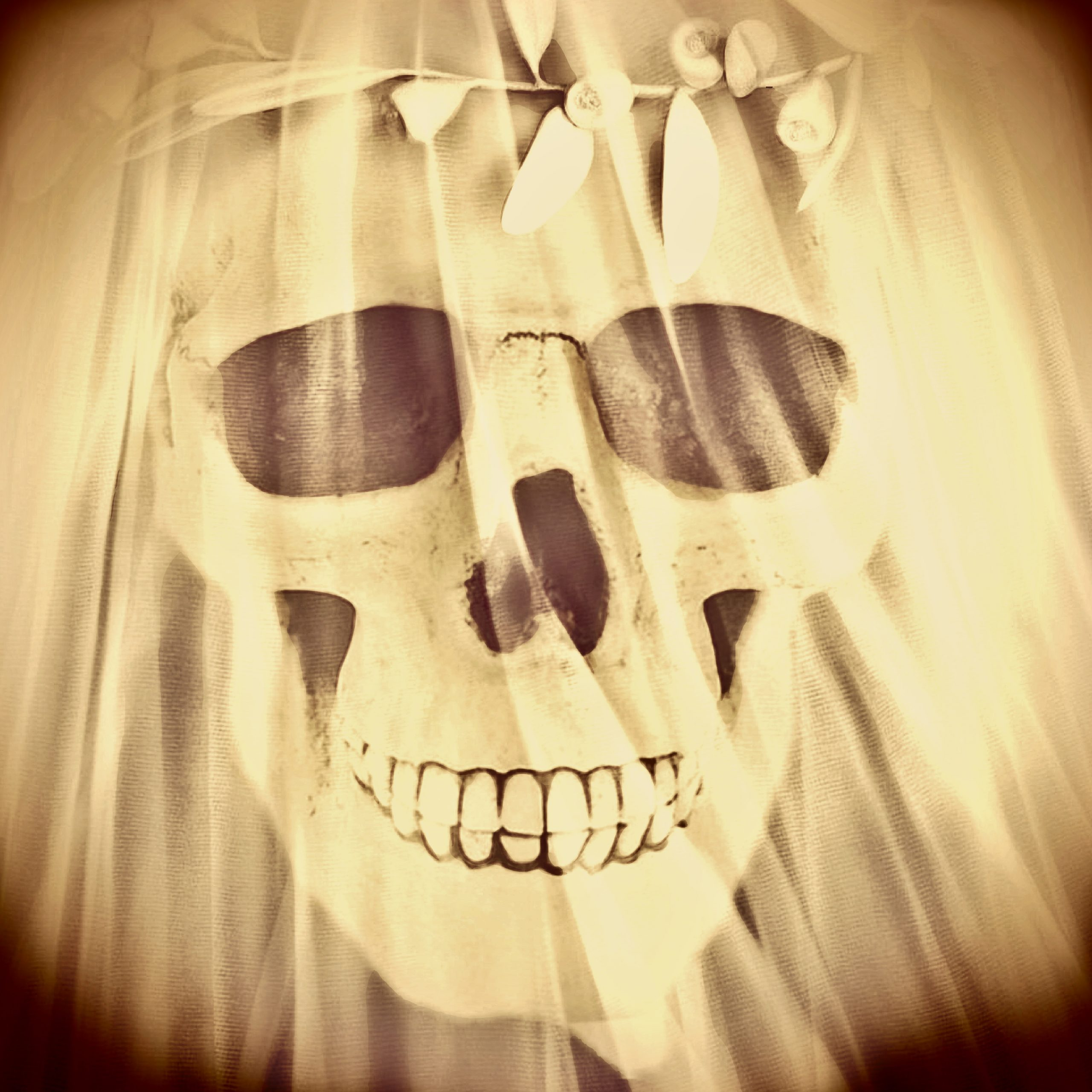 Ghostly Skull Bride